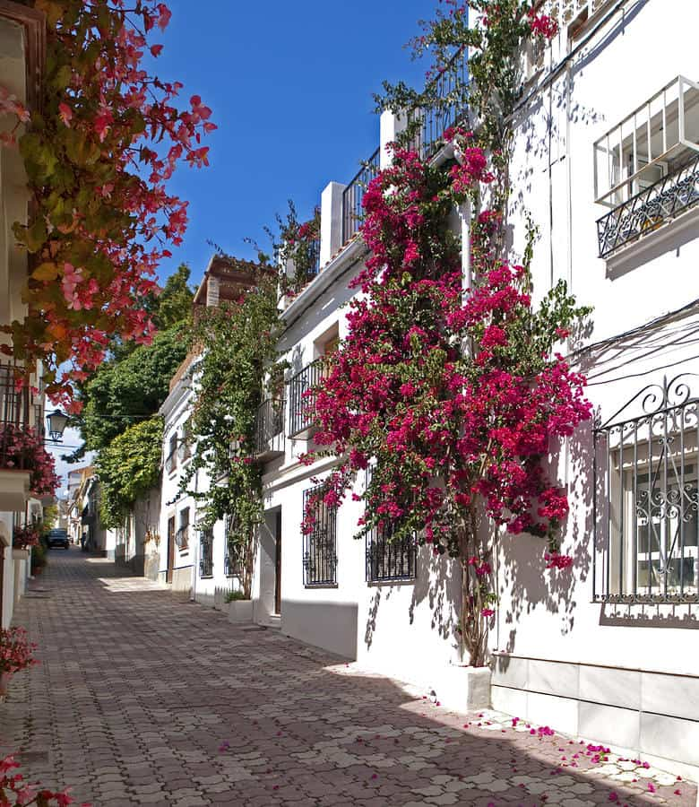marbella private tour