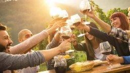 Ronda Wine Tour - Private wine tasting in Ronda