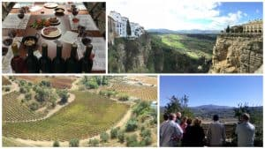 ronda winery tour